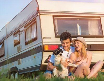 Vacunas y documentos necesarios para viajar con tu perro o gato al extranjero