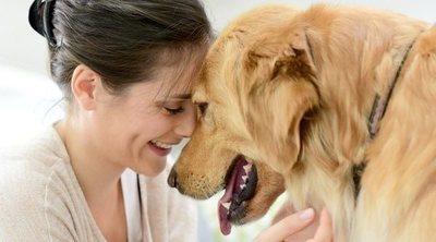 Proyecto PEPO: perros de protección para víctimas de la violencia de género